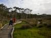 Rhyll Inlet boardwalk