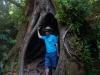 Aleksi hiding in a tree