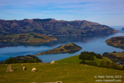 Banks_Peninsula-080_1_2-HDR