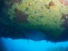 humpback-051