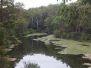 2012-02-28 Parramatta Lake