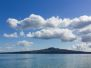 2012-11-09 Rangitoto Island