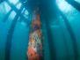 2012-01-10 Rye Pier