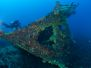2012-01-22 SS Coogee