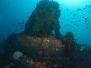 2012-02-04 Sven's Reef